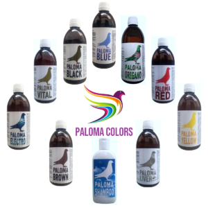 Paloma Colors