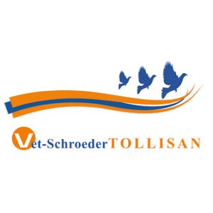 Tollisan