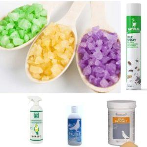 Desinfección e Higiene